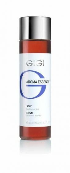 GIGI Aroma Essence Soap For Normal Skin 250ml 8.4fl.oz